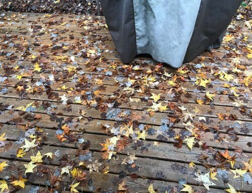 Remove Leaves from Wood Deck